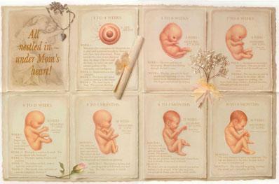 Poster - All Nestled in Under Mom's Heart
