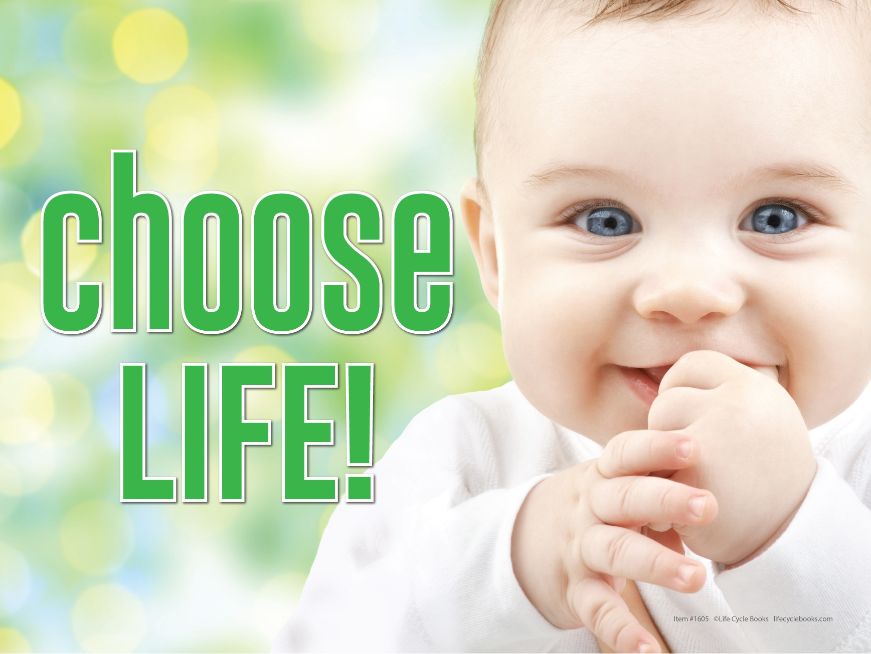 """Rally Sign - Choose Life - 24"""" by 16"""""""