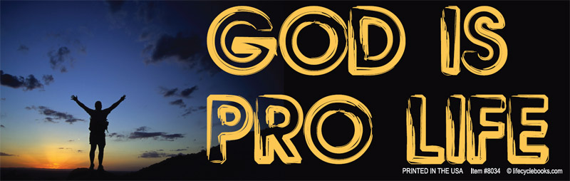 Bumper Sticker - God is Pro Life