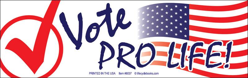 Magnetic Bumper Sticker - Vote Pro Life