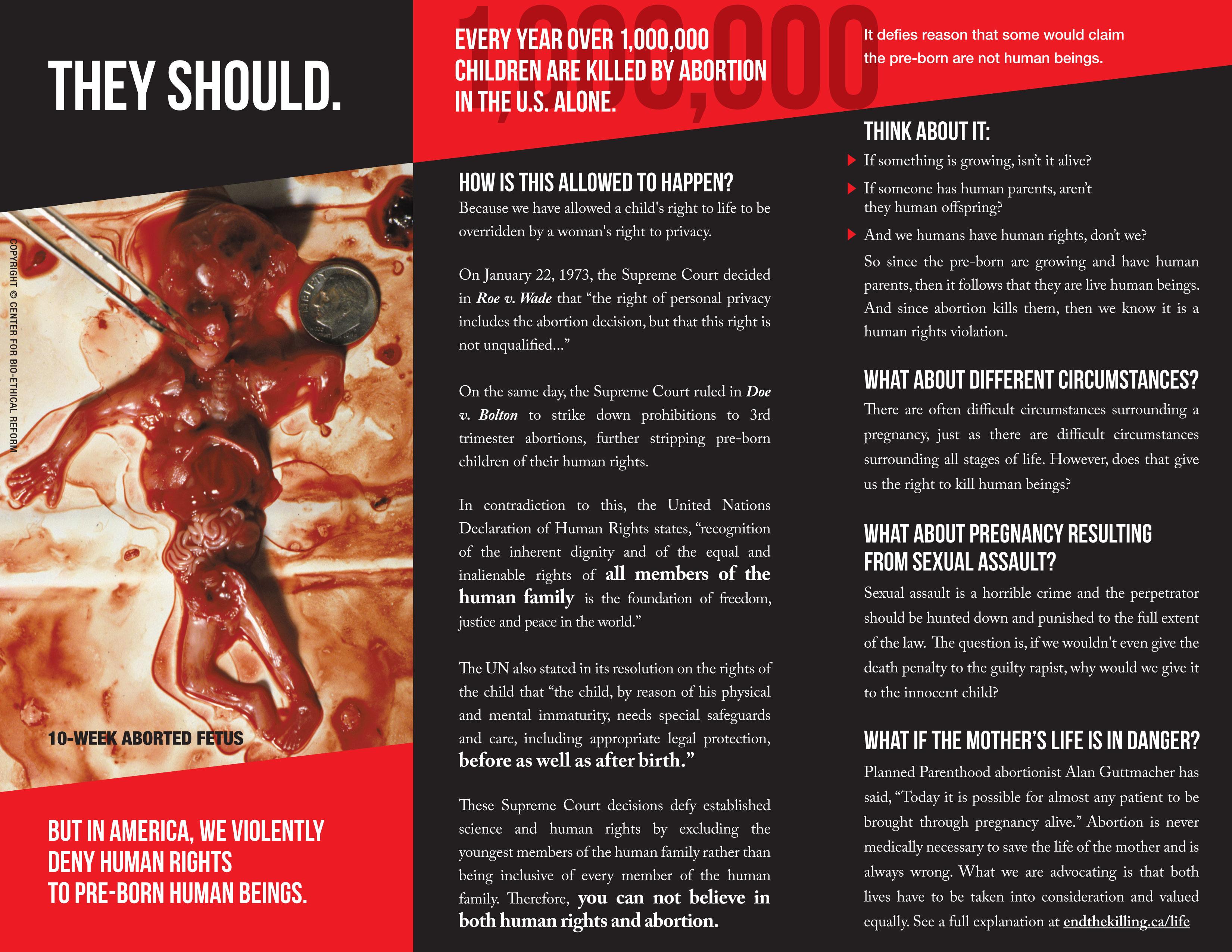 Brochure - Human Rights