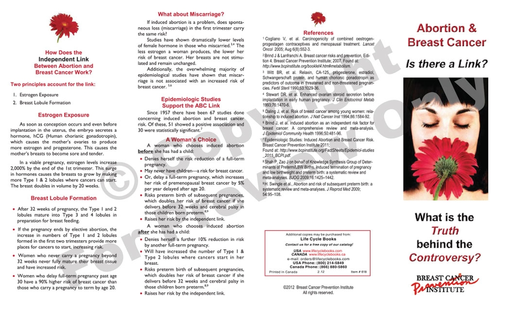 Brochure - Abortion & Breast Cancer
