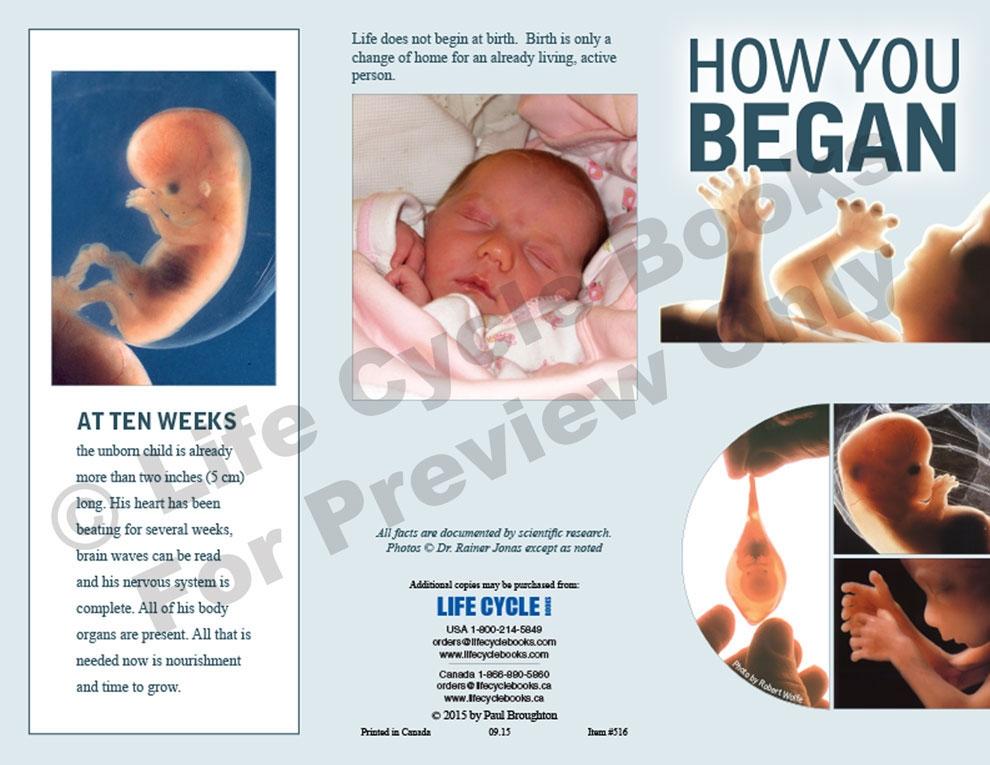 Brochure - How You Began
