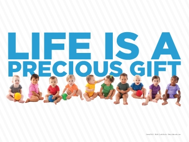 Rally Sign - Life is A Precious Gift
