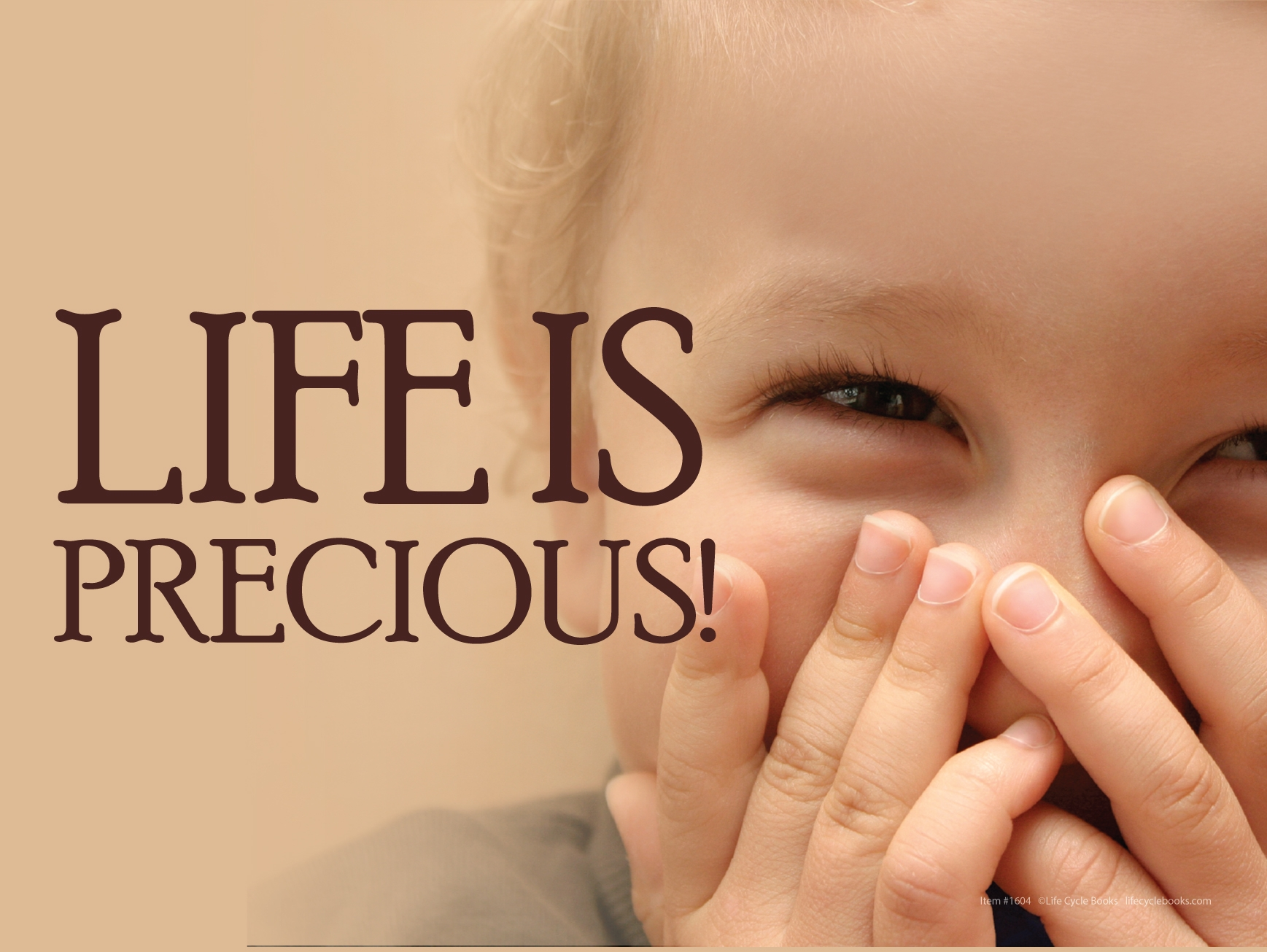 """Rally Sign - Life is Precious - 24"""" by 18"""""""