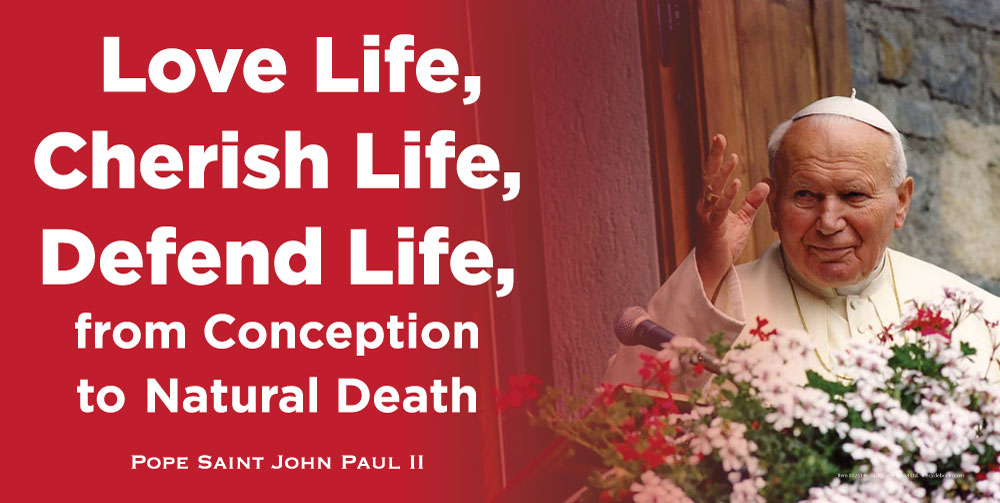 Banner - Love Life, Cherish Life, Defend Life, from Conception to Natural Death